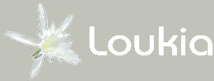 Loukia Studios & Suites Kini, Syros